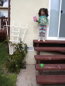 Drop #2: Dropping onto the concrete. Both eggs broke. (To Lucy's delight!)