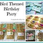 Bird Themed Birthday Party