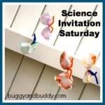 Introducing Science Invitation Saturdays!