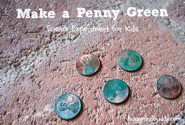 make a penny turn green just like the statue of liberty in this science activity for