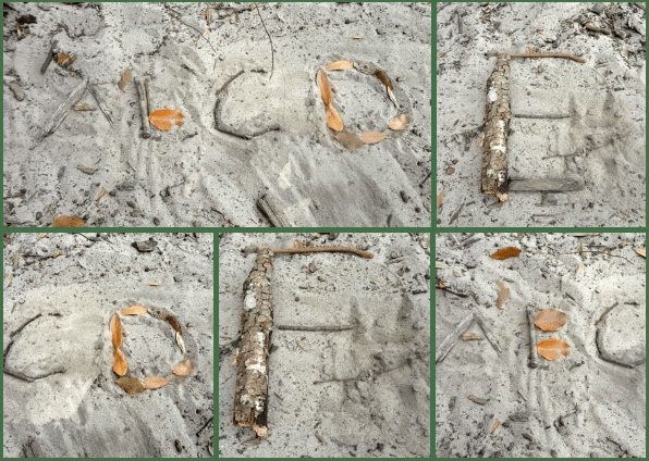 Making Letters with Nature~ Inspiration Laboratories