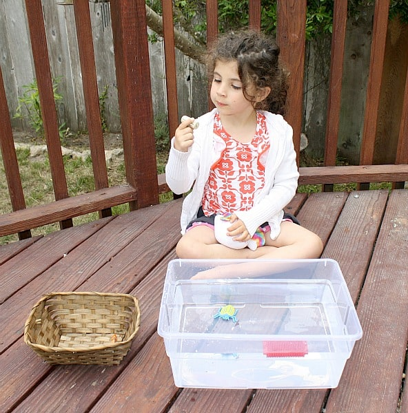 Sink or Float: Science for Kids from Buggy and Buddy