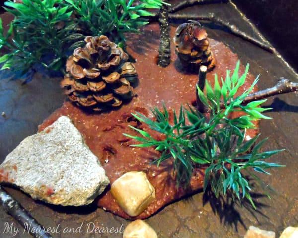 Forest Small World~ My Nearest and Dearest