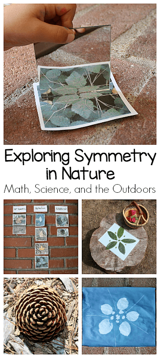 Exploring Symmetry in Nature: Math and Science for Kids