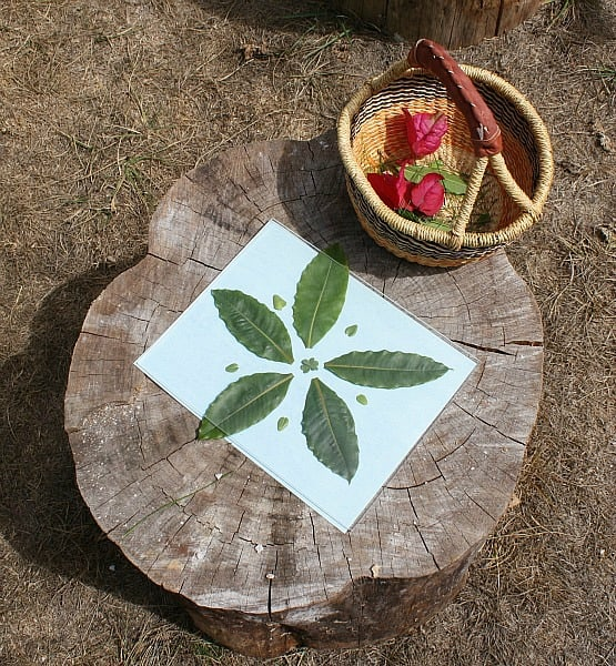 Create symmetrical art using natural objects and sun paper