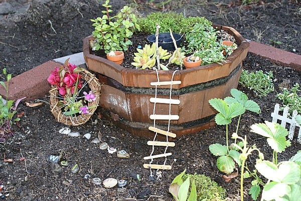 Making a Fairy Garden