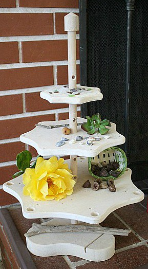 Set up a nature area in your home