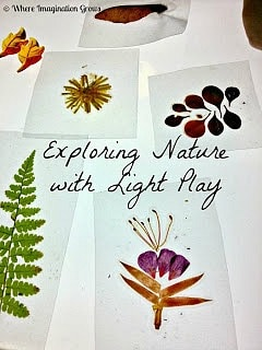 DIY Nature Slides and Light Play
