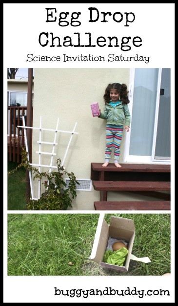 Egg Drop Challenge: Science for Kids~ Buggy and Buddy