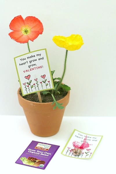 Plant Valentine and Seed Homemade Valentine for Kids to Make