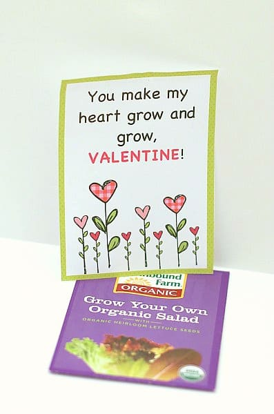 Homemade Valentines for Kids: Plant and Seed Valentine ...