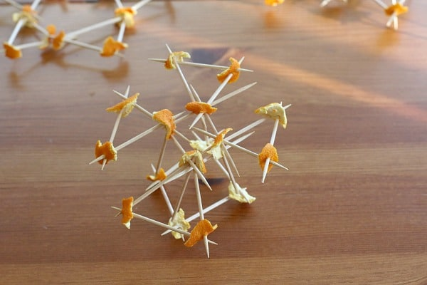 Building with Orange Peels and Toothpicks~ Buggy and Buddy