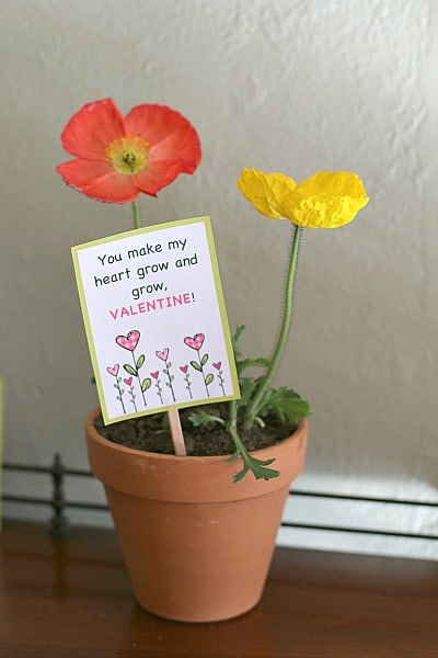 Potted Plant Valentine with free printable (Makes a great teacher valentine!)