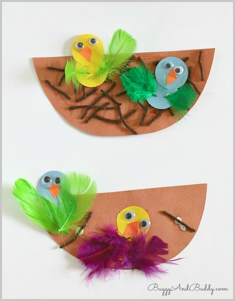 Bird and Nest Craft