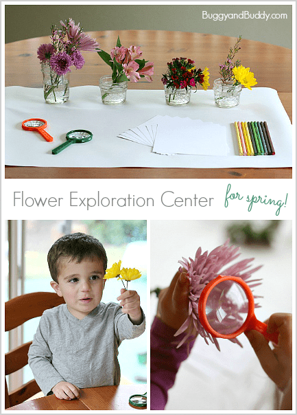 Flower Exploration Center: A fun spring sensory and art activity for kids! ~ BuggyandBuddy.com