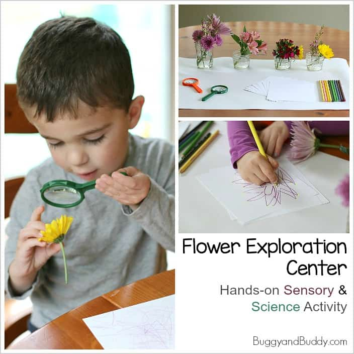 Flower Exploration Center: Science, Sensory, and Art Activity for Spring!
