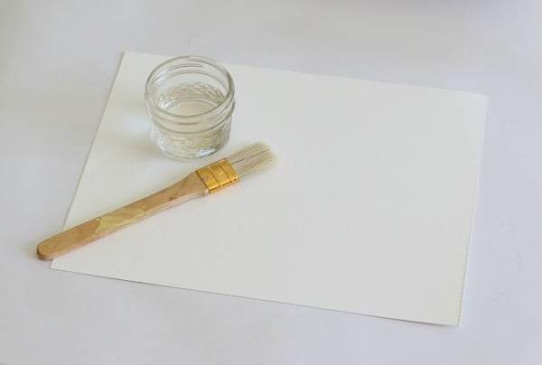 paint watercolor paper with a layer of water