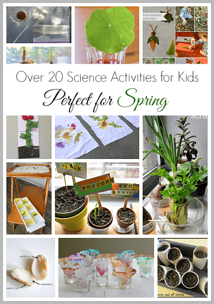 20+ Science Activities for Kids that are Perfect for Spring!