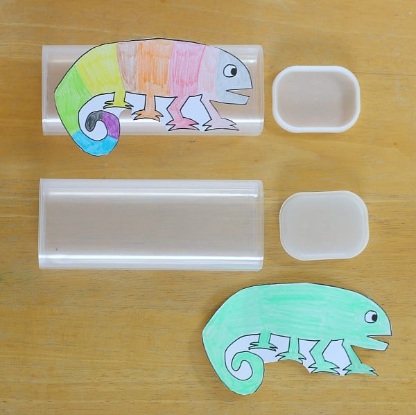 tape The Mixed Up Chameleon to a container