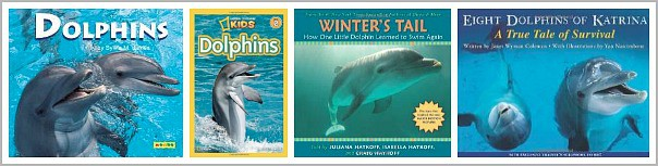 Children's Books about Dolphins