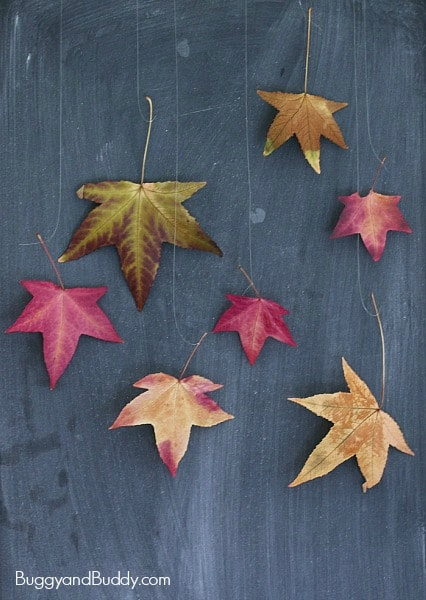 How to Preserve Leaves: Fun Fall Craft for Kids - Buggy and
