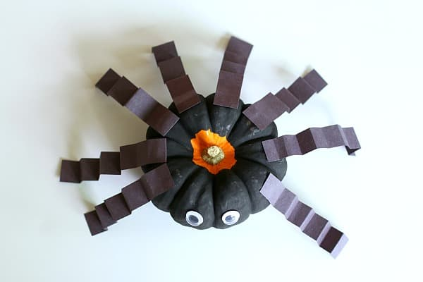 glue 8 legs onto your spider pumpkin