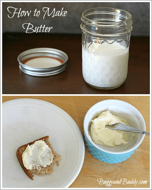 How to Make Butter - Buggy and Buddy