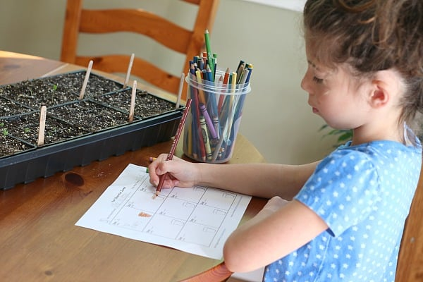 Gardening with Kids: Growing Seeds Indoors (with free printable observation sheet)