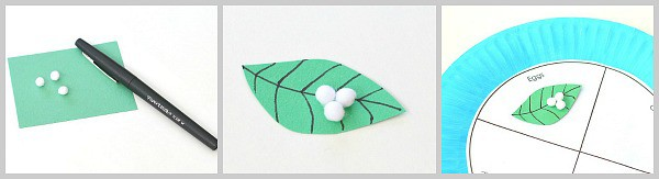 paper leaf and eggs for butterfly craft