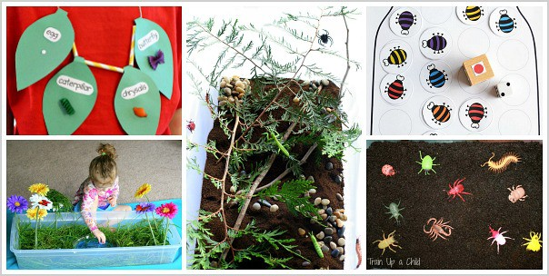 30 bug crafts and activities for kids buggy and buddy - Butterfly world com table tennis ...