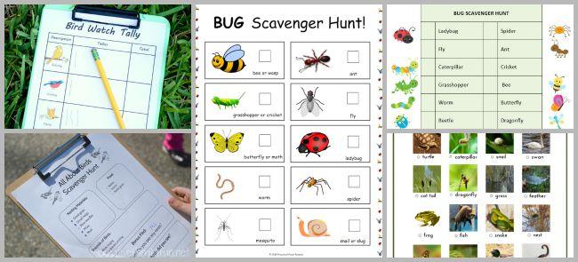 free printable wildlife scavenger hunts for kids