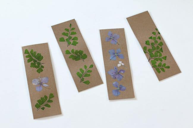 pressed flower bookmark craft for kids
