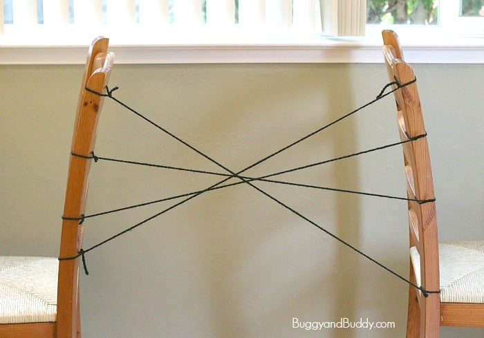 spider web science activity for kids