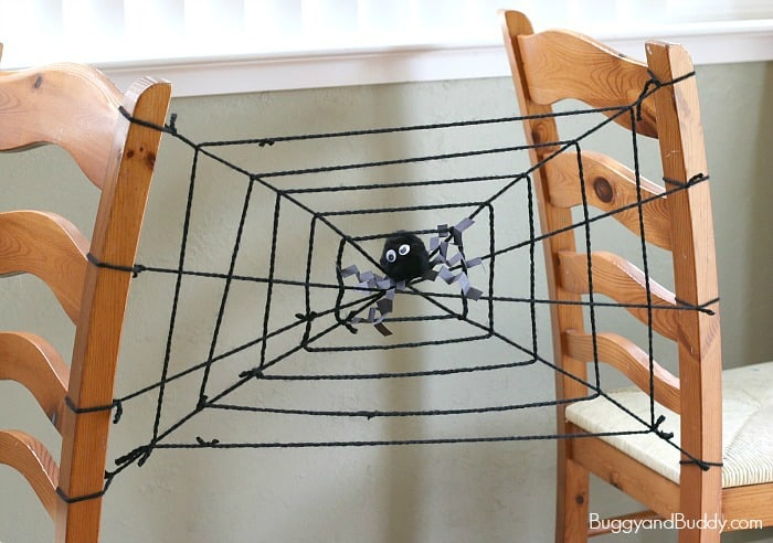 Halloween Science for Kids: Learn about Spider Webs and Spiders