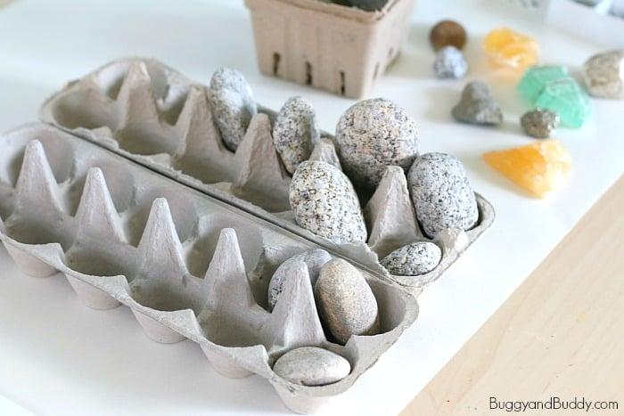 sorting rocks with egg cartons