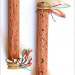 How to Make a Rainstick Instrument