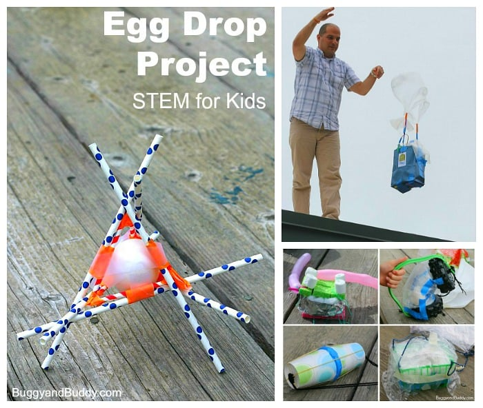 egg drop stem for kids egg drop project buggy and buddy