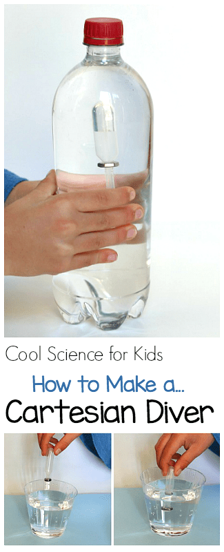 Cool Science for Kids: How to Make a Cartesian Diver (and a Squidy Diver)- Fun STEM activity for elementary kids! ~ BuggyandBuddy.com