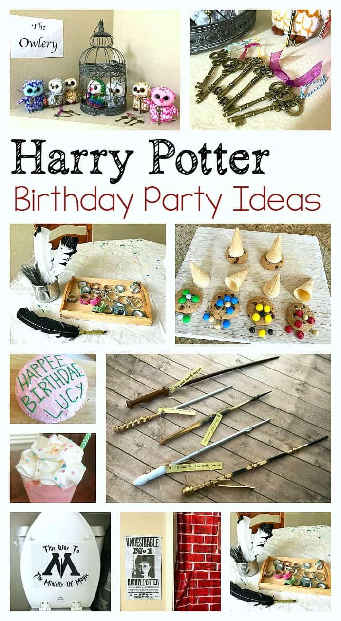 Parties Crafts And Cake Decor Boksburg : Harry Potter Birthday Party Ideas - Buggy and Buddy