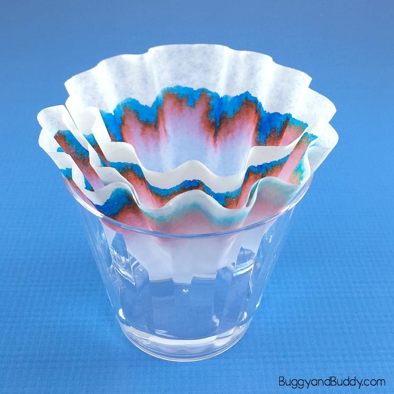 coffee filter chromatography science experiment for kids