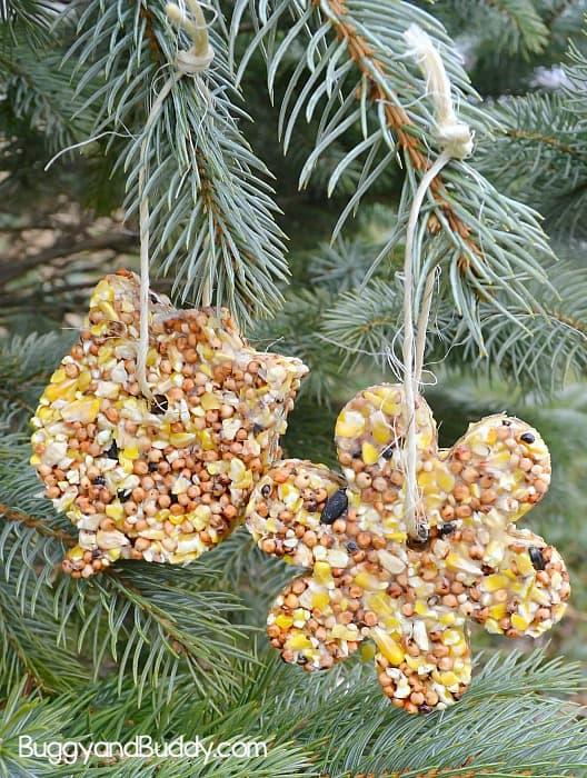 diy birdseed ornaments craft for kids