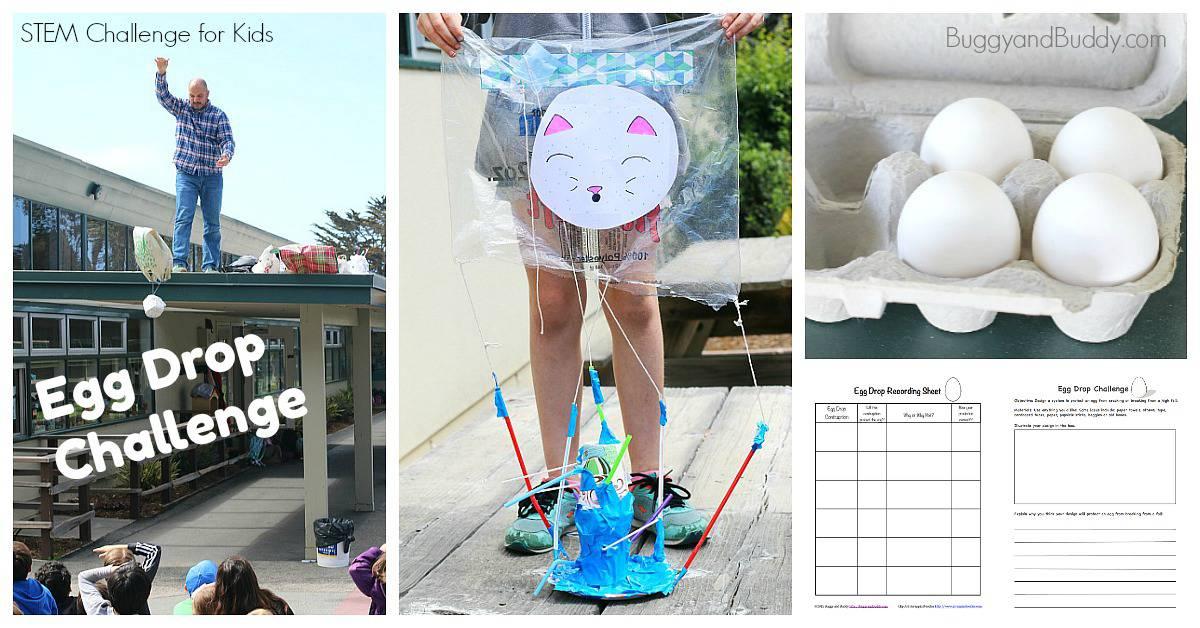 STEM Challenge for Kid: Egg Drop Project